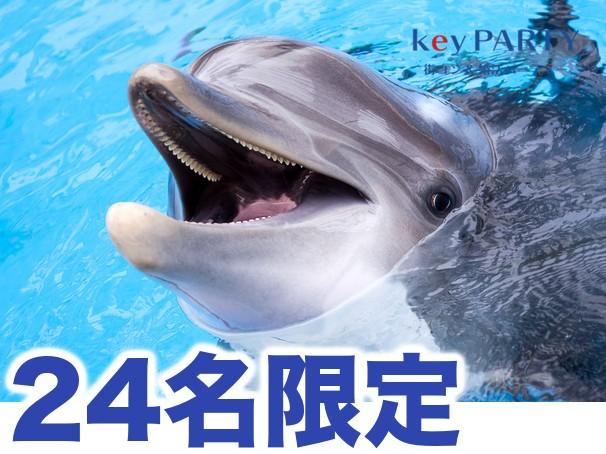 【24名限定】水族館コン@京都水族館