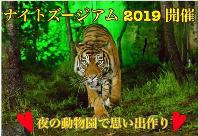 【期間限定】ナイトズージアム2019@八木山動物公園