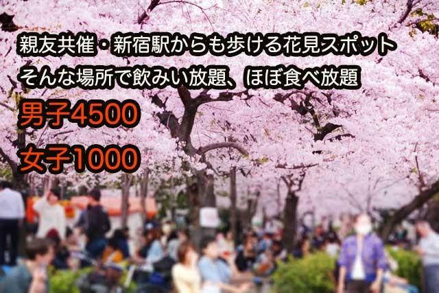 開催3月29日(日)只今女子先行ですかね☆限定50名で既に47名です新宿からも歩ける距離で☆お花見企画、大人数が苦手な人でも楽しめる丁度いい人数でアットホームです☆皆で楽しもう