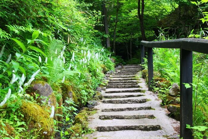 ★第3回★精神修行(´д`)ハイキングコンin足利自然公園 紅葉狩りver
