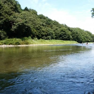 槻川の清らかな流れは冷たいのに生き物が多く、とても魅力的。