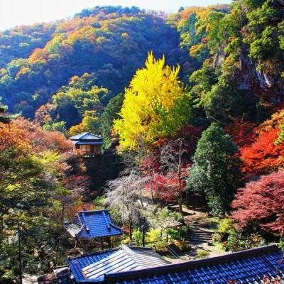 最後のビューポイントは行道山々腹にある浄因寺、境内は廃墟と化していますが、山頂から点在する約3万体の大小さまざまな石仏や寝釈迦は見ものです。