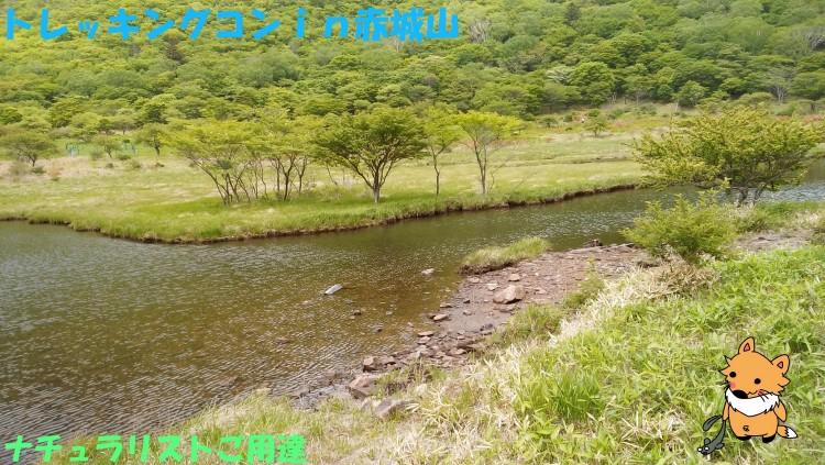 ★第19回★自然を満喫(*´▽`*)トレッキングコンin赤城山