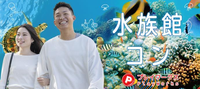 水族館20代コン名古屋