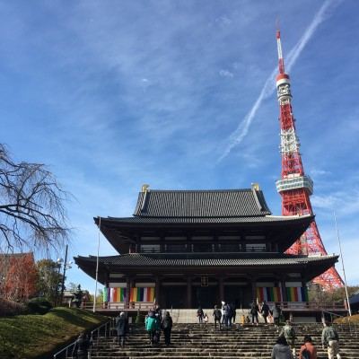 増上寺にも立ち寄りますが、増上寺は工事中ですのでこの景色は見ることができません。 東京タワーにはいきますが展望台には上りません。