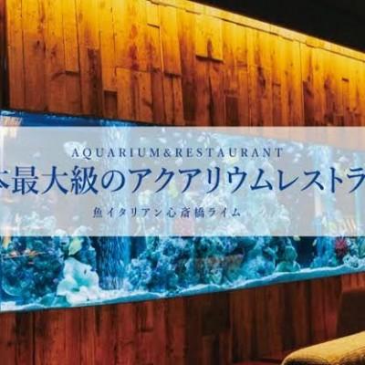 当日会場店舗・アクアリウム&魚イタリアン 心斎橋ライム  インスタ映え確実のオシャレな豪華レストランです。